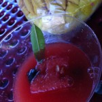 Watermelon drink with skewered watermelon and blueberries garnished with lemon verbena